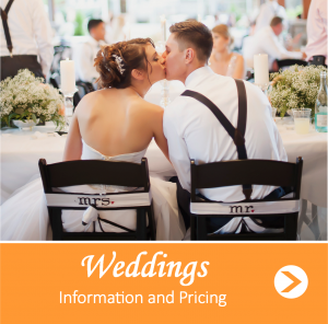 Wedding Pricing for Web